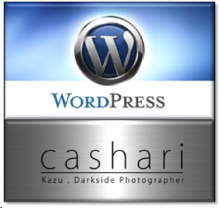 ExciteブログからWordPressへの引っ越し その後