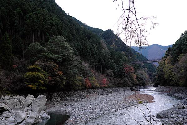 sashie1