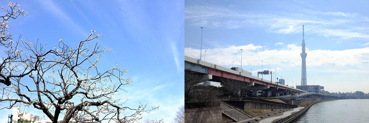 2015/03/08(日) 東京写らん♪ 私のぶらりコース~テンガロンハットの女の子 相内梨沙 Part-I