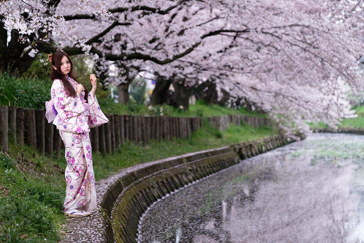 『写らん♪春の着物撮影会 其の壱~昼顔、夜顔』 ももせゆき
